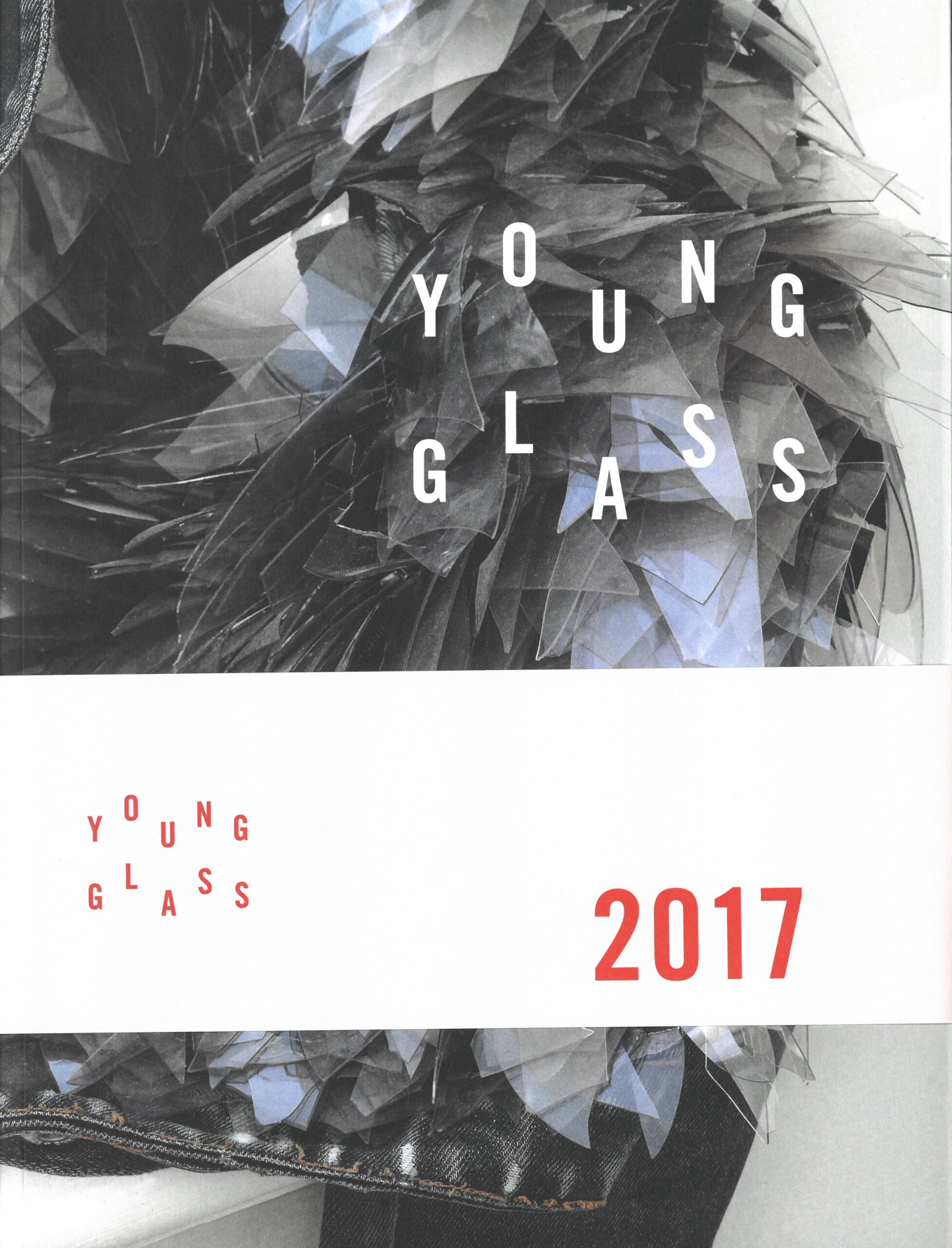 YOUNG GLASS 2017